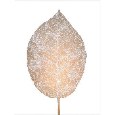 RGB leaf