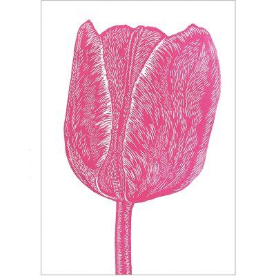 RGB tulip pink