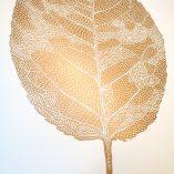 birch-leaf-gold-white-3