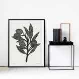 50x70 olive branch interior photo