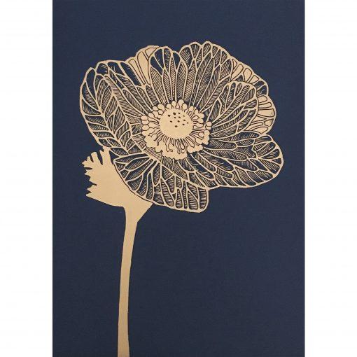 50x70 Anemone indigopsd