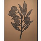 olivebranch terre framed