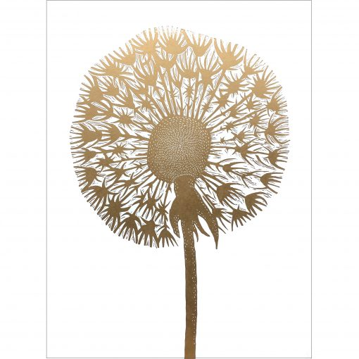 50x70 Dandelion White